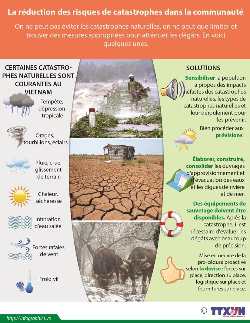 La reduction des risques de catastrophes dans la communaute hinh anh 1