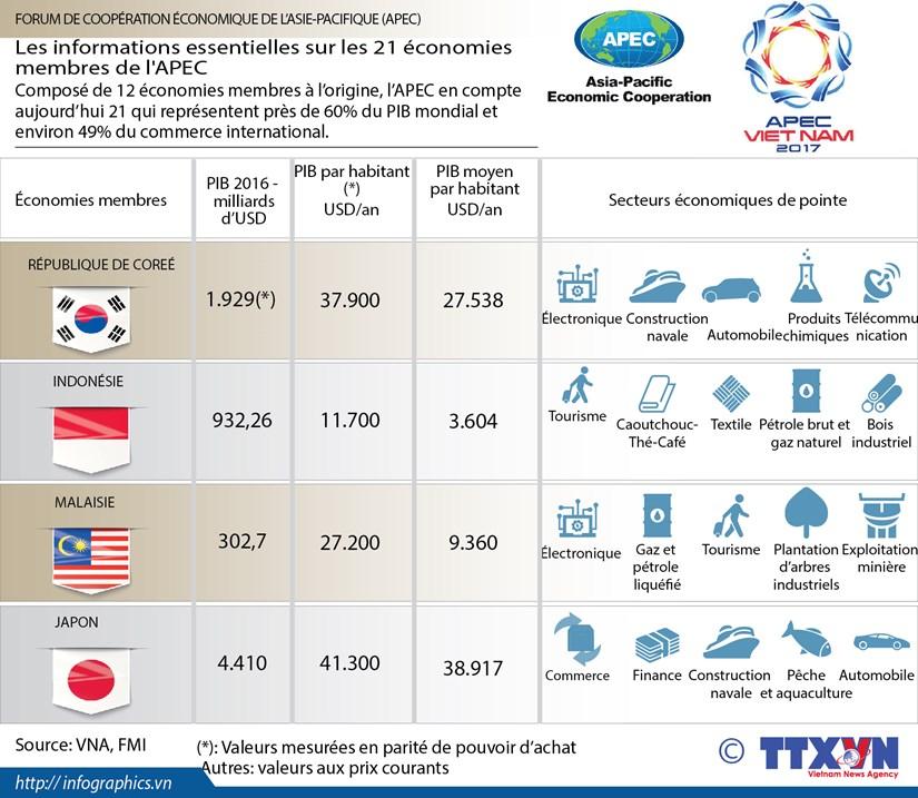 Les informations essentielles sur les 21 economies membres de l'APEC hinh anh 1