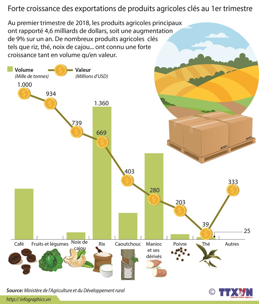Forte croissance des exportations de produits agricoles cles au 1er trimestre hinh anh 1