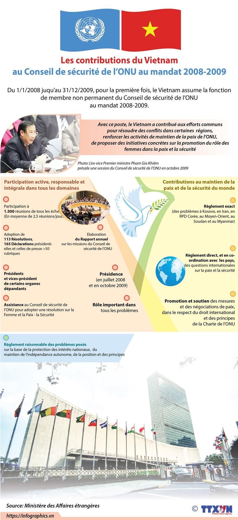Les contributions vietnamiennes au Conseil de securite de l'ONU au mandat 2008-2009 hinh anh 1