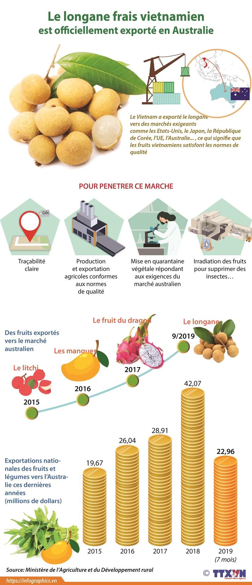 Le longane frais vietnamien est officiellement exporte en Australie hinh anh 1