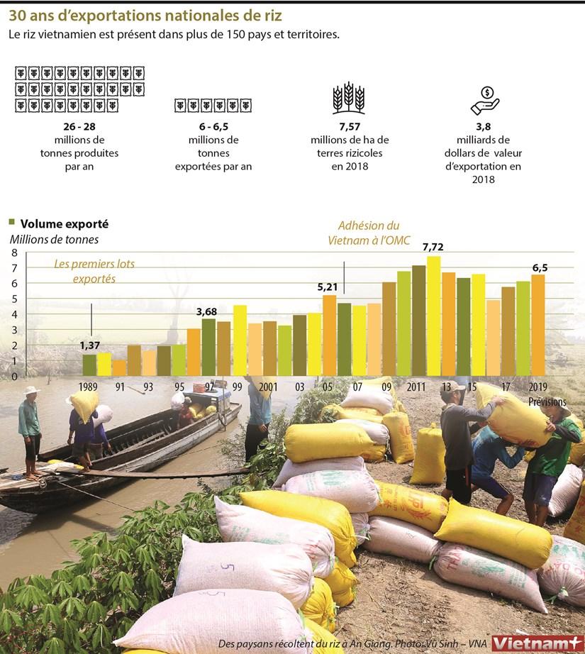 30 ans d'exportations nationales de riz hinh anh 1