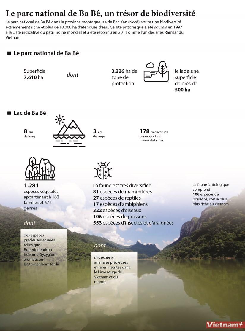 Le parc national de Ba Be, un tresor de biodiversite hinh anh 1