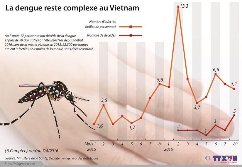 La dengue reste complexe au Vietnam hinh anh 1