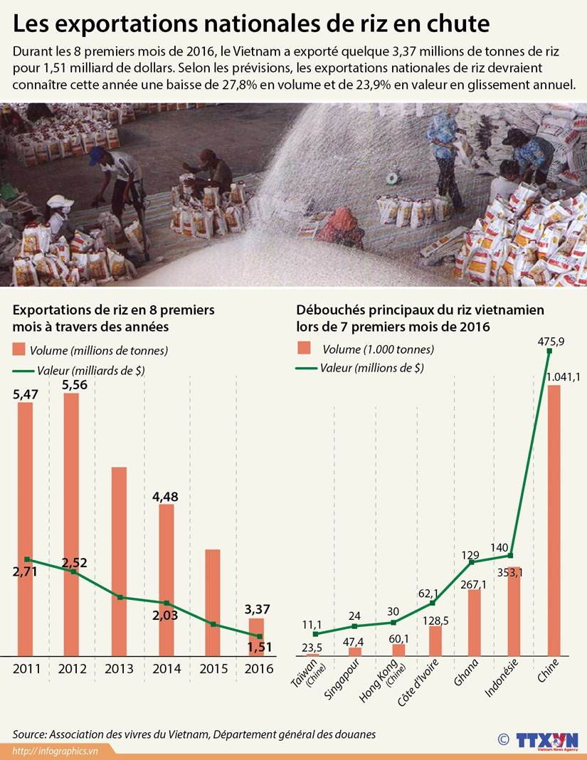 Les exportations nationales de riz en forte baisse hinh anh 1