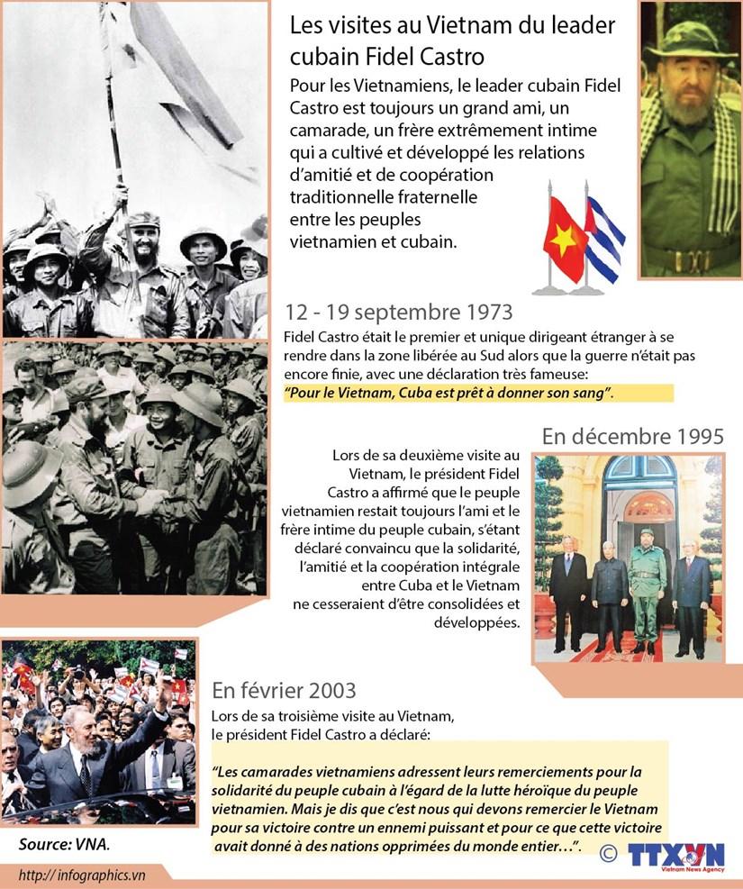 Les visites au Vietnam du leader cubain Fidel Castro hinh anh 1