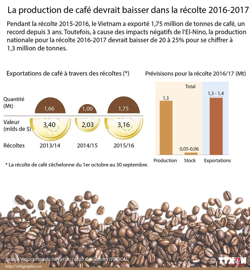 La production de cafe devrait baisser dans la recolte 2016-2017 hinh anh 1