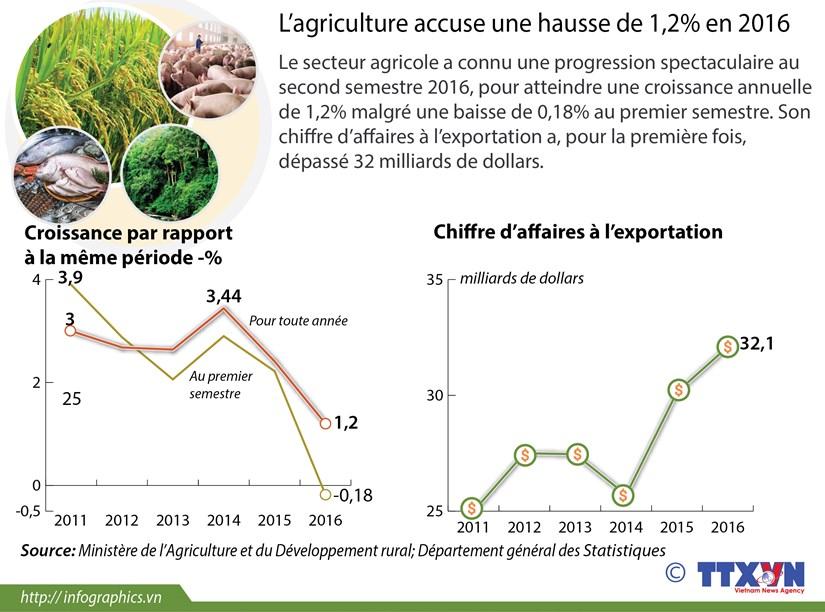 L'agriculture accuse une hausse de 1,2% en 2016 hinh anh 1