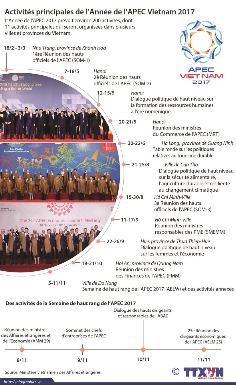 Activites principales de l'Annee de l'APEC Vietnam 2017 hinh anh 1