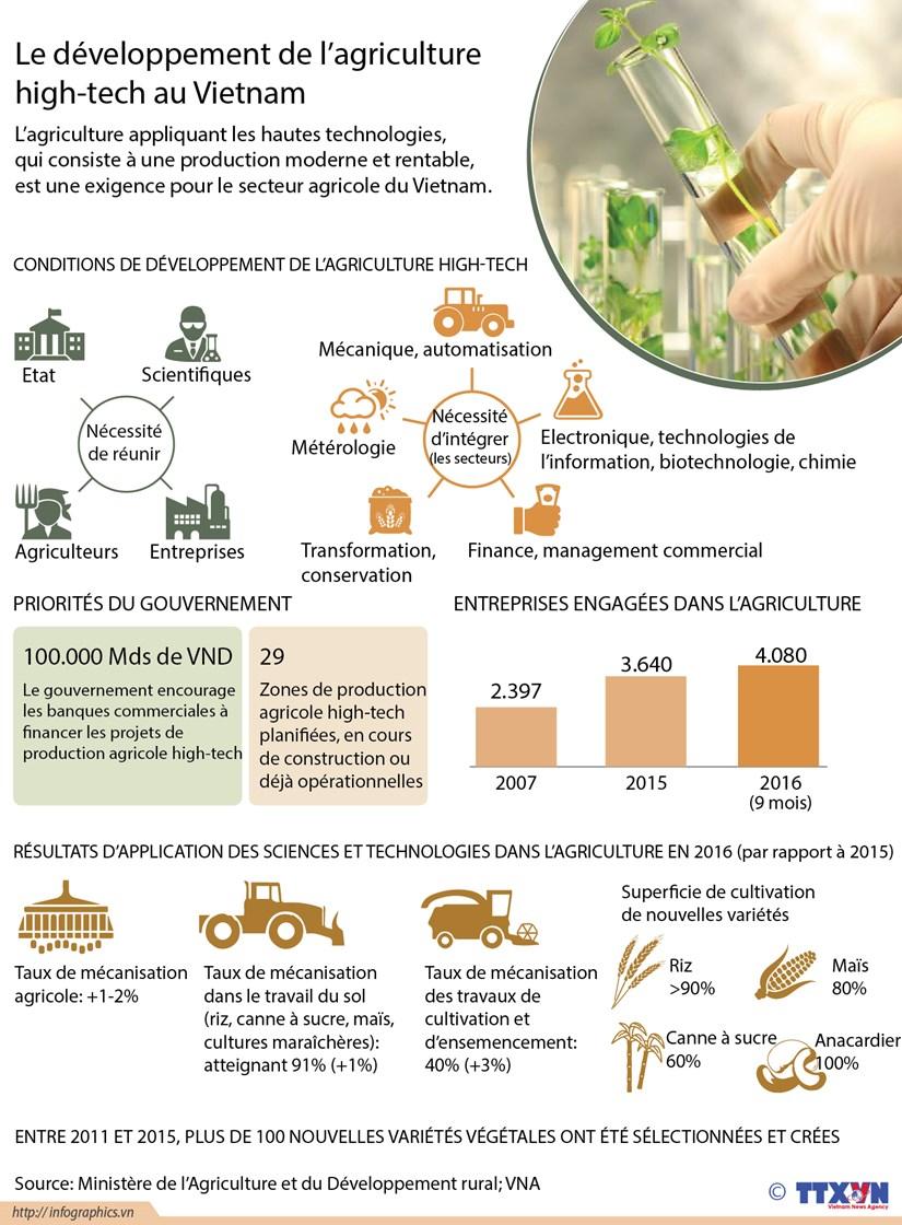 Le developpement de l'agriculture high-tech au Vietnam hinh anh 1