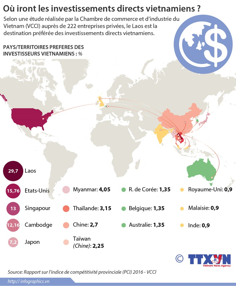 Ou iront les investissements directs vietnamiens ? hinh anh 1