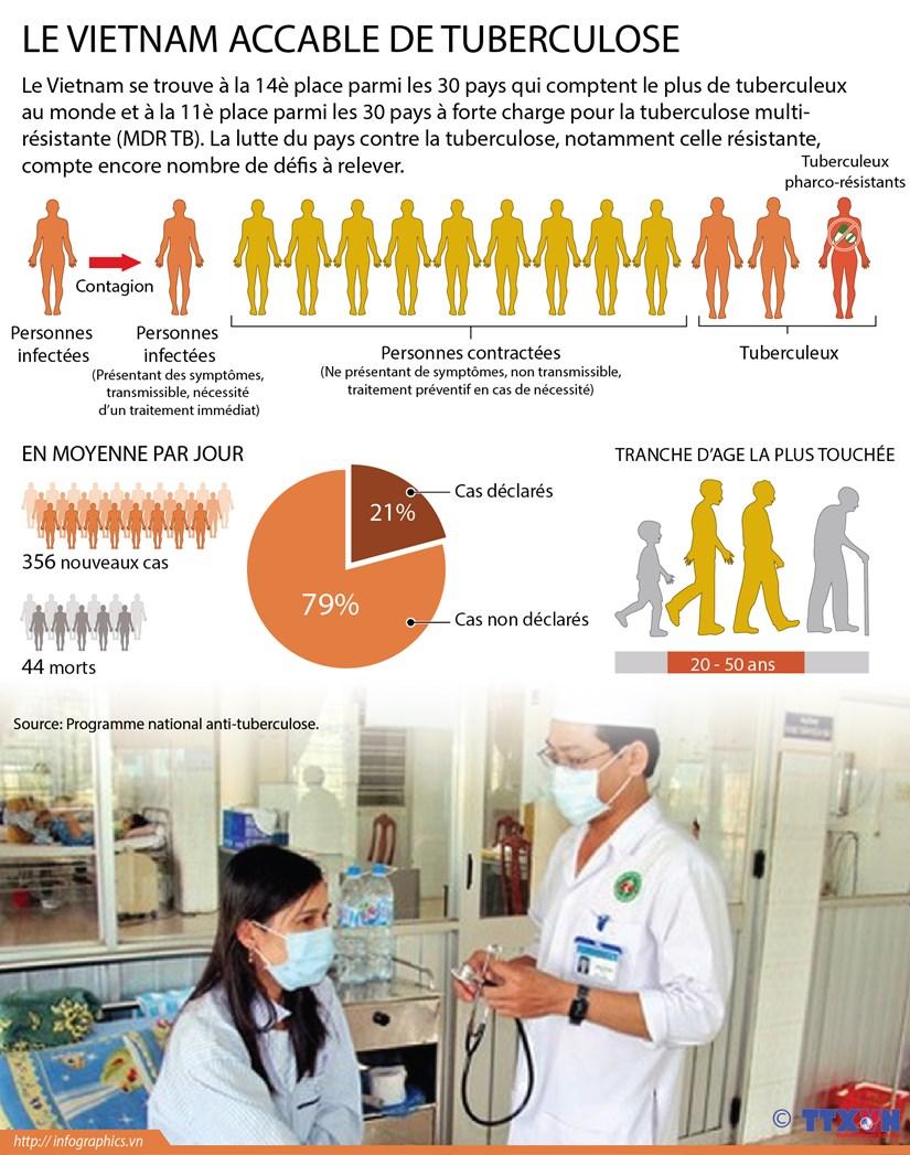 Le Vietnam accable de tuberculose hinh anh 1