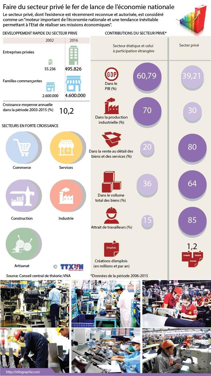 Faire du secteur prive le fer de lance de l'economie nationale hinh anh 1
