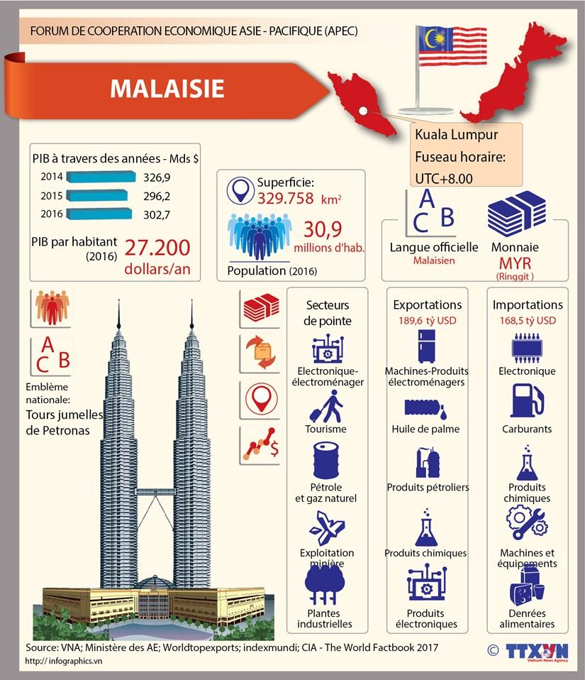 Membres de l'APEC - Malaisie hinh anh 1