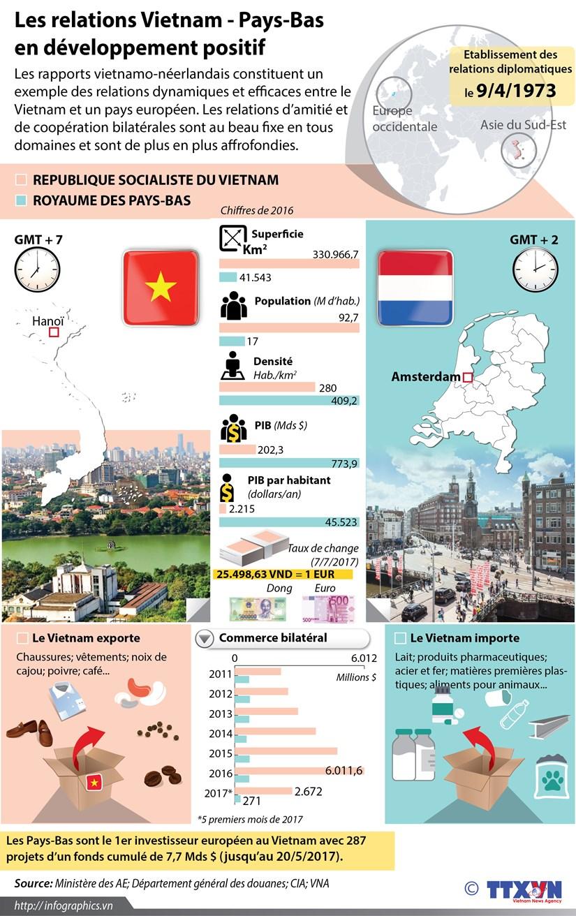 Les relations Vietnam - Pays-Bas en developpement positif hinh anh 1