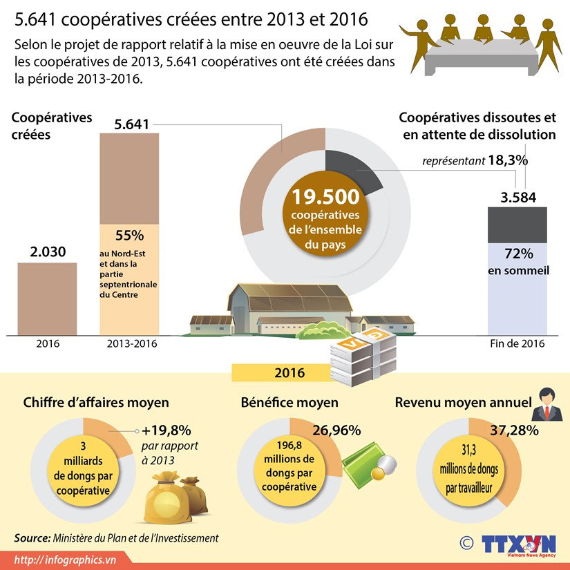 5.641 cooperatives creees entre 2013 et 2016 hinh anh 1