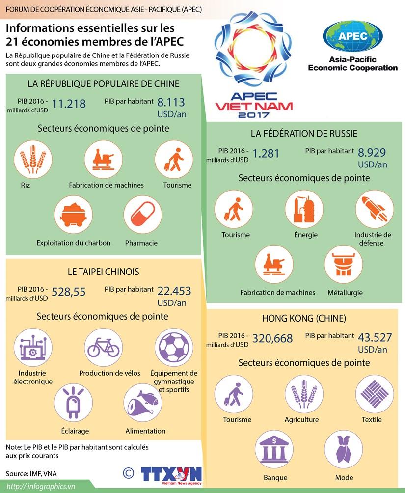 Informations essentielles sur les 21 economies membres de l'APEC hinh anh 1