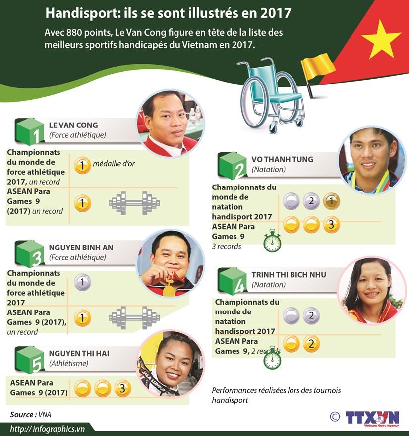 Handisport: ils se sont illustres en 2017 hinh anh 1