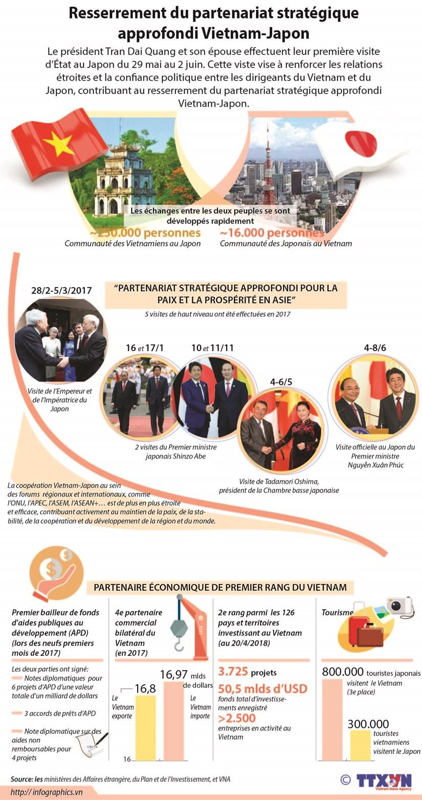 Resserrement du partenariat strategique approfondi Vietnam-Japon hinh anh 1