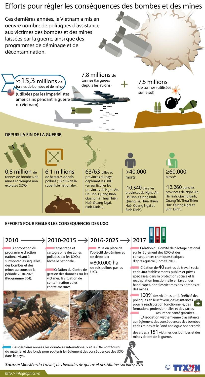 Efforts pour regler les consequences des bombes et des mines hinh anh 1