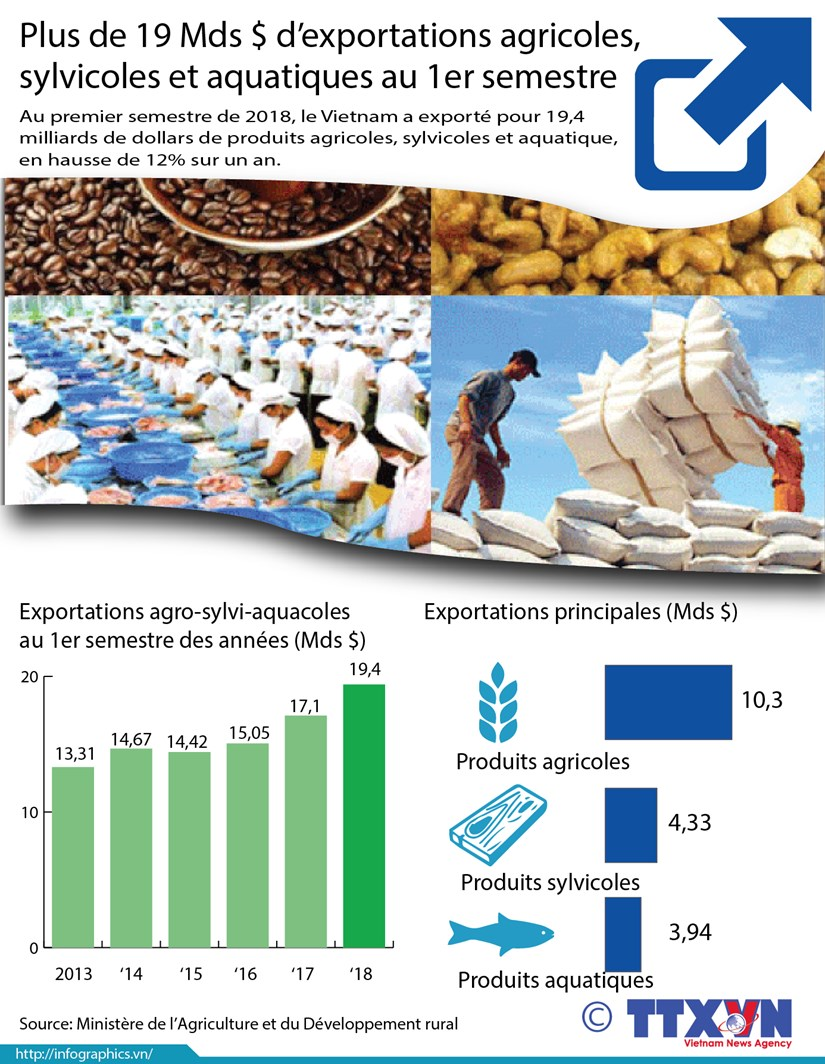 Plus de 19 Mds $ d'exportations agricoles, sylvicoles et aquatiques au 1er semestre hinh anh 1