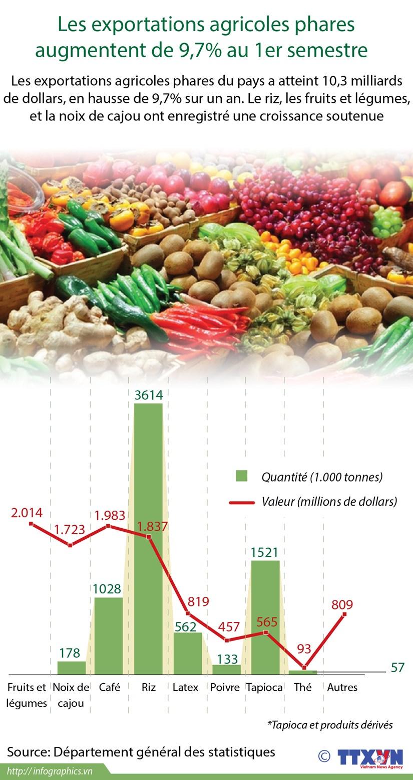Les exportations de produits agricoles phares augmentent de 9,7% au 1er semestre hinh anh 1
