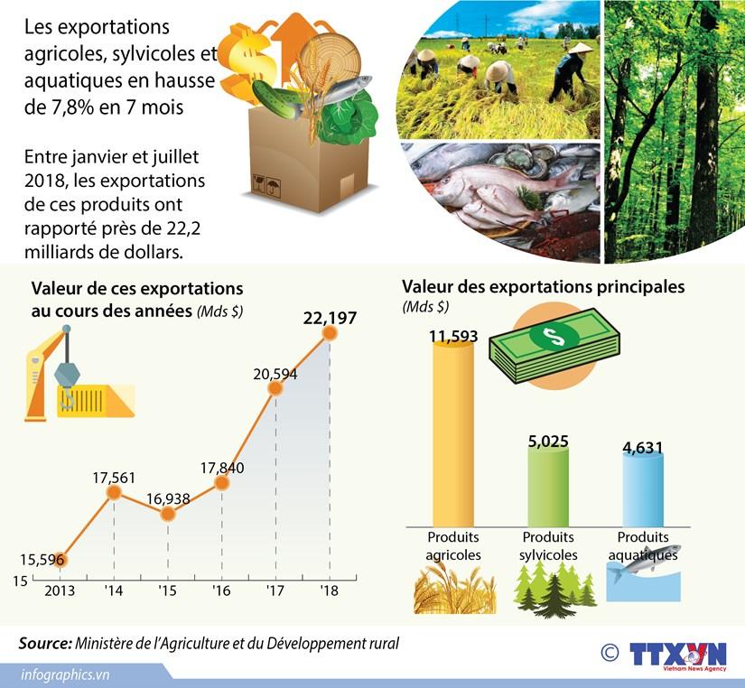 [Infographie] Les exportations agricoles, sylvicoles et aquatiques en 7 mois hinh anh 1