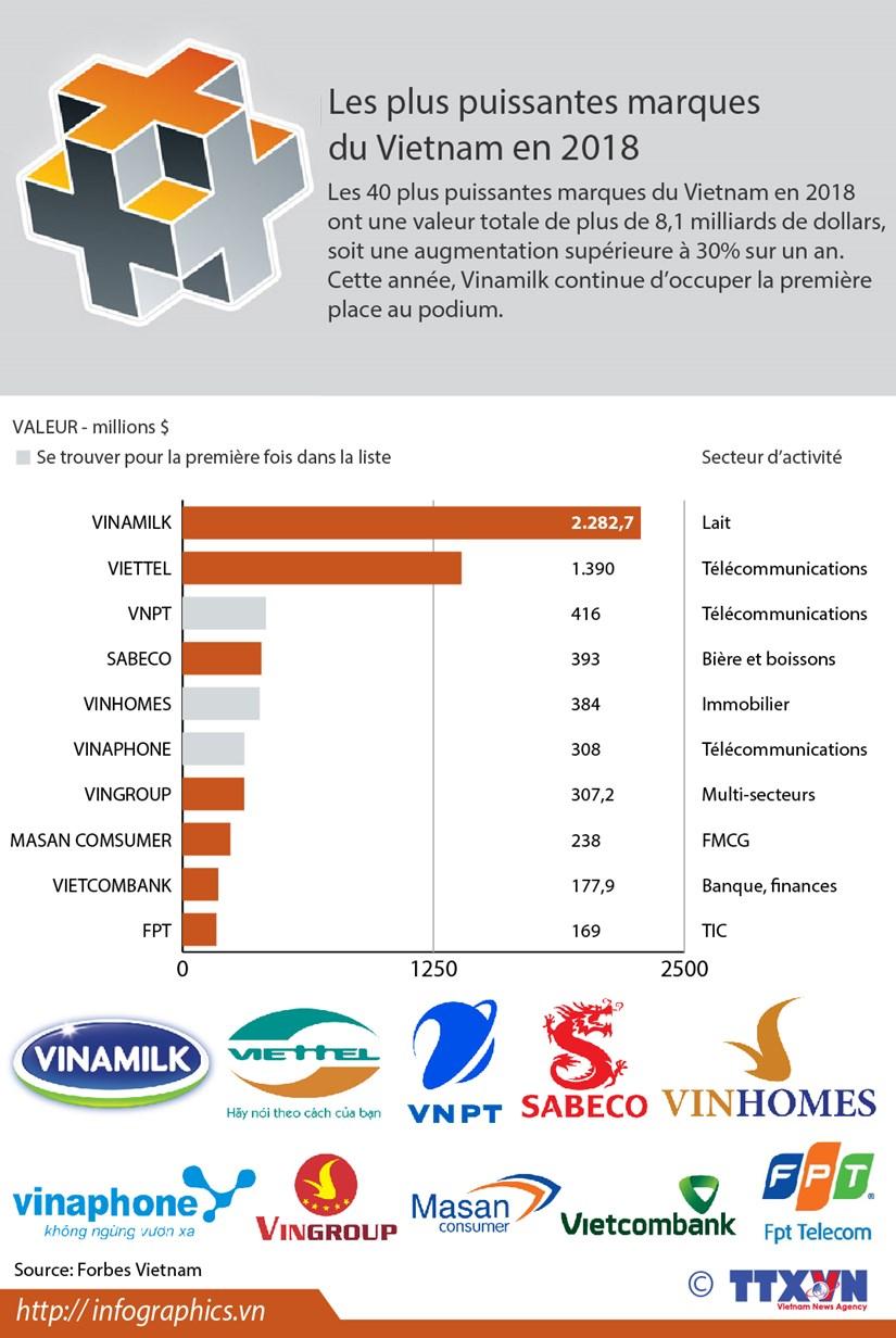 [Infographie] Les plus puissantes marques du Vietnam en 2018 hinh anh 1