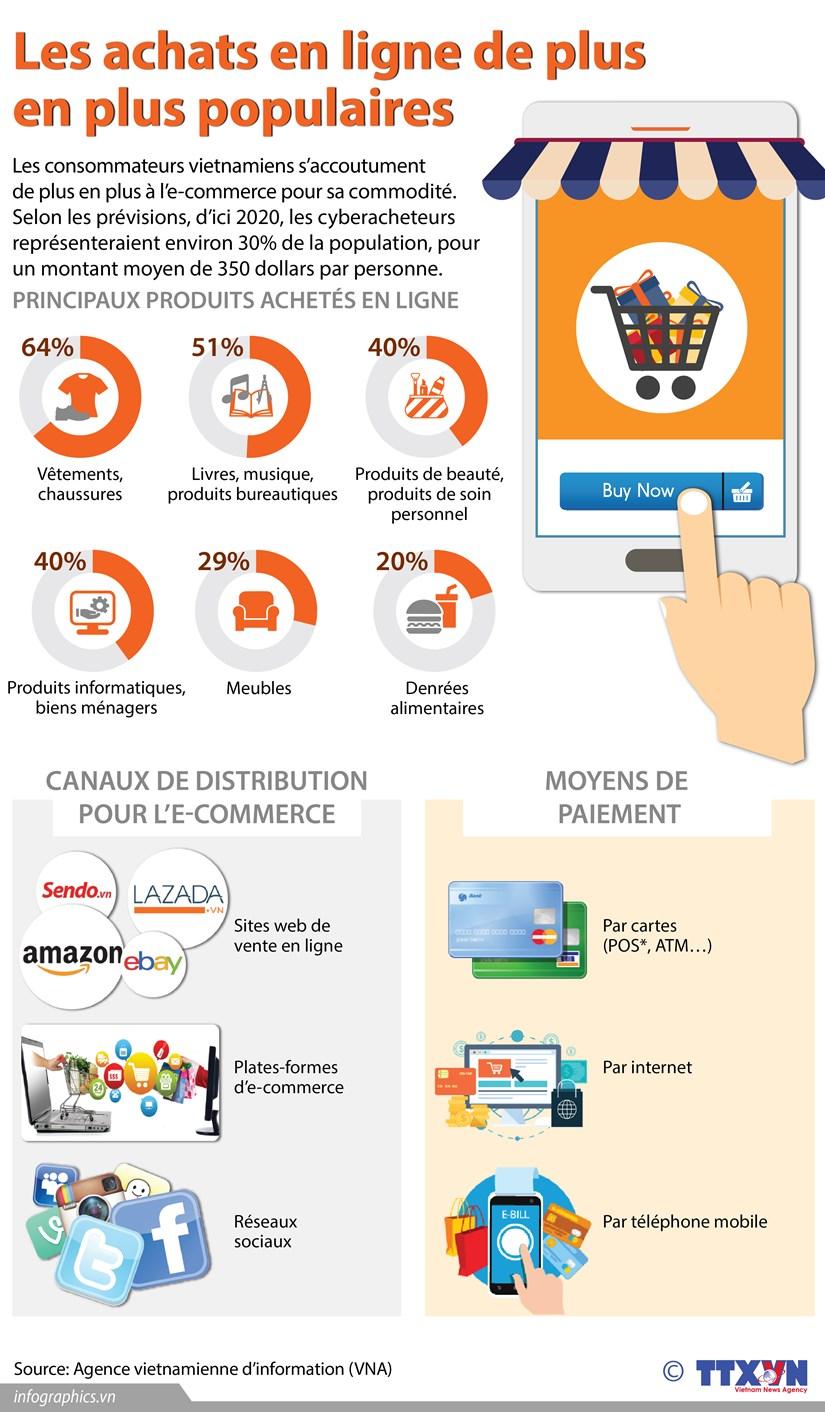 [Infographie] Les achats en ligne de plus en plus populaires hinh anh 1