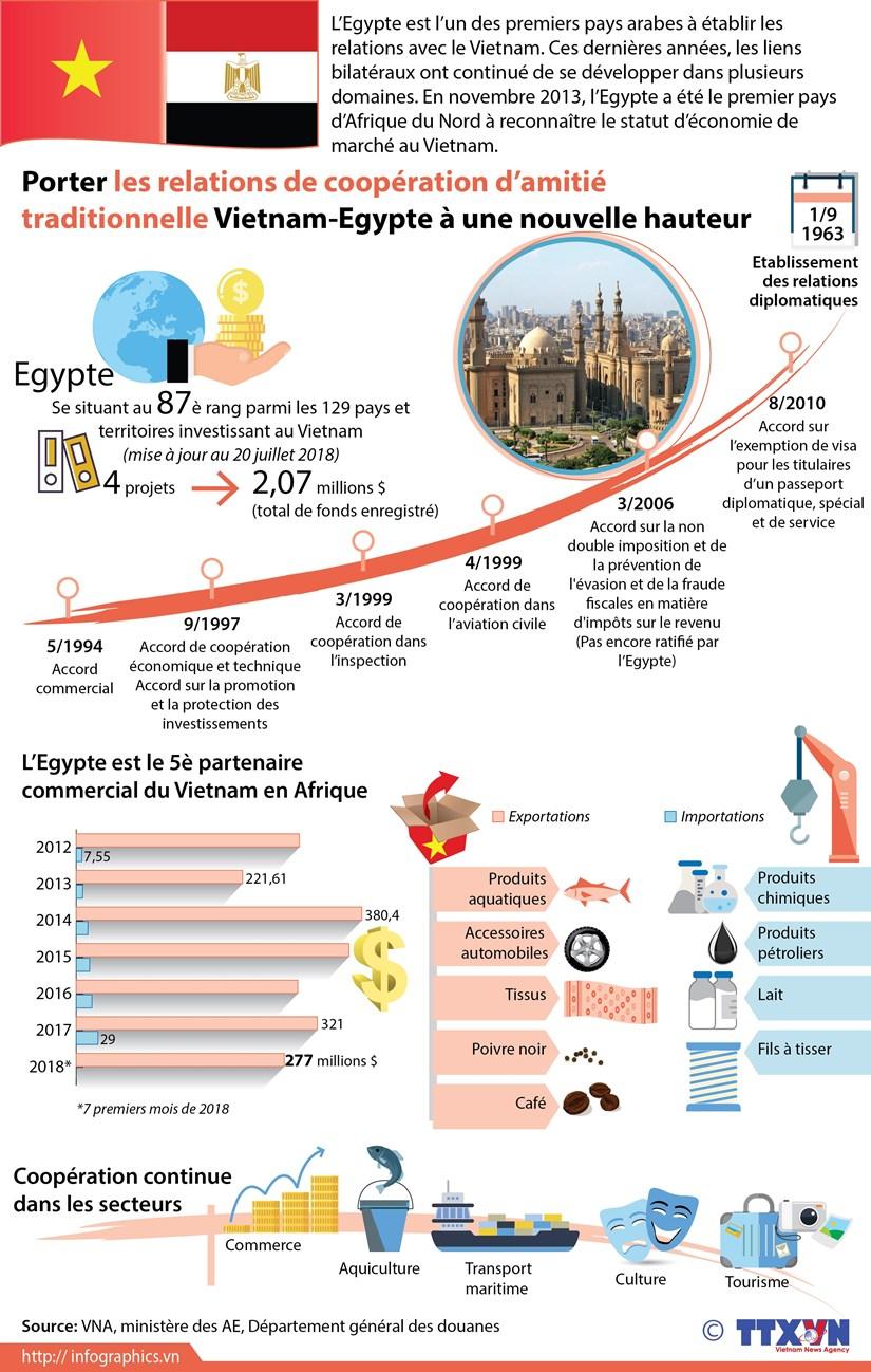 [Infographie] Porter les relations Vietnam-Egypte a une nouvelle hauteur hinh anh 1