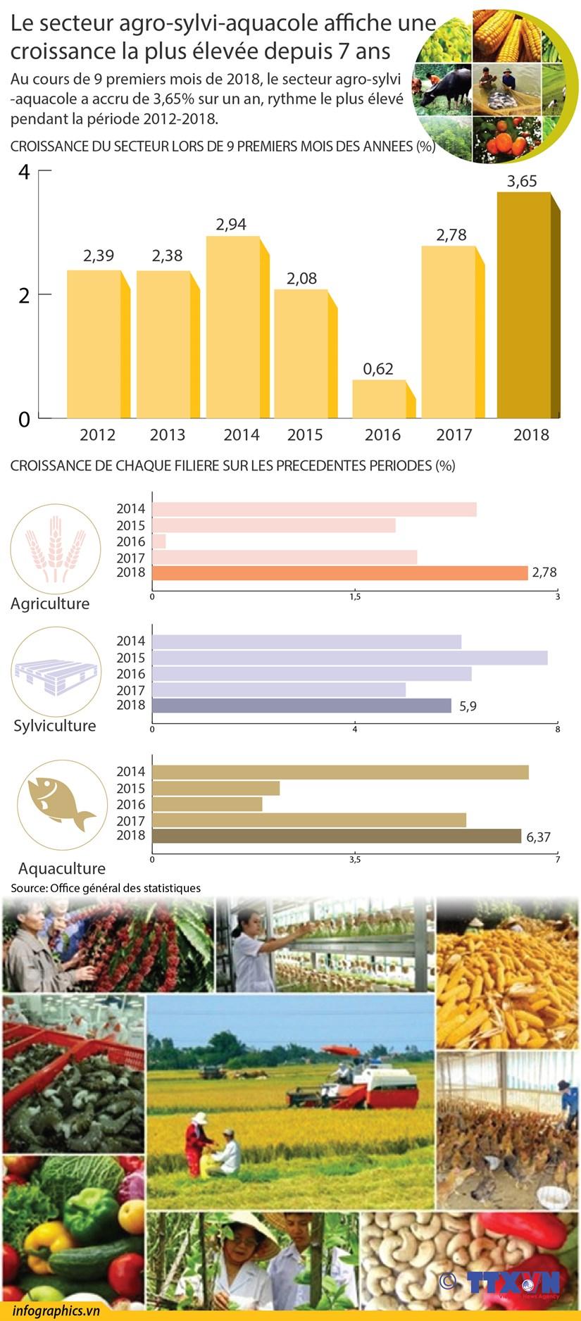 [Infographie] Le secteur agro-sylvi-aquacole affiche une croissance la plus elevee depuis 7 ans hinh anh 1