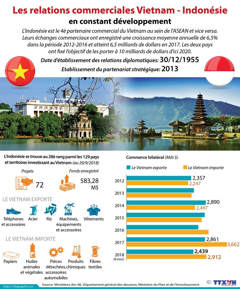 [Infographie] Les relations commerciales Vietnam - Indonesie en constant developpement hinh anh 1