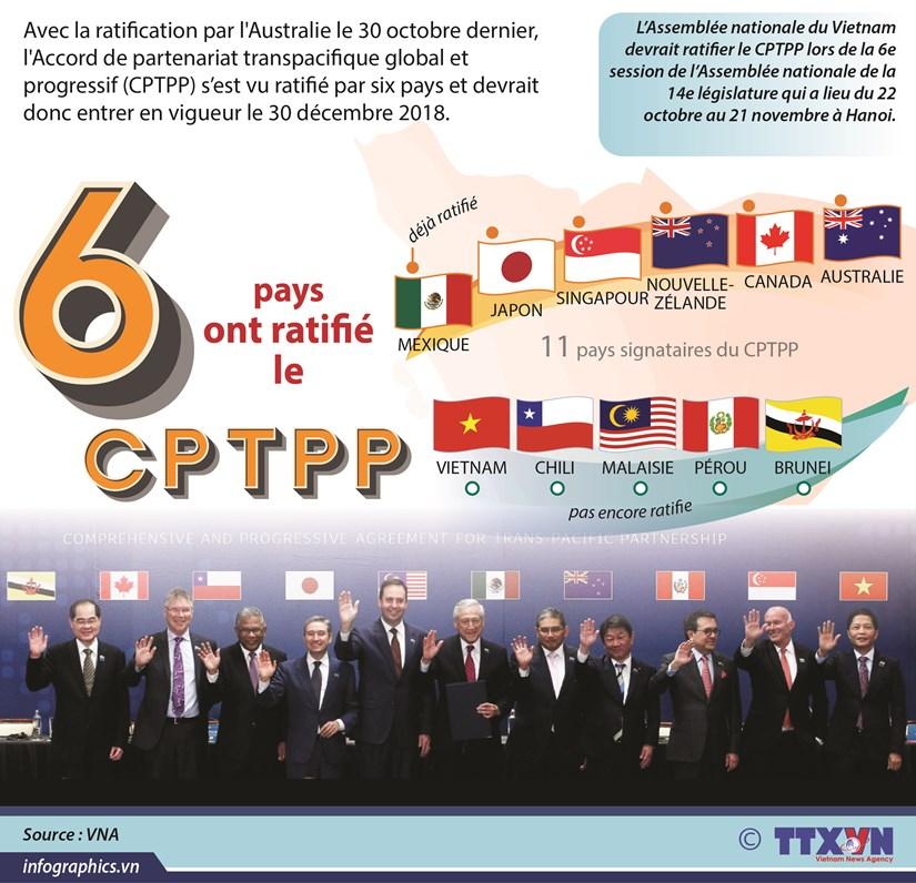 [Infographie] Le CPTPP devrait entrer en vigueur en decembre hinh anh 1