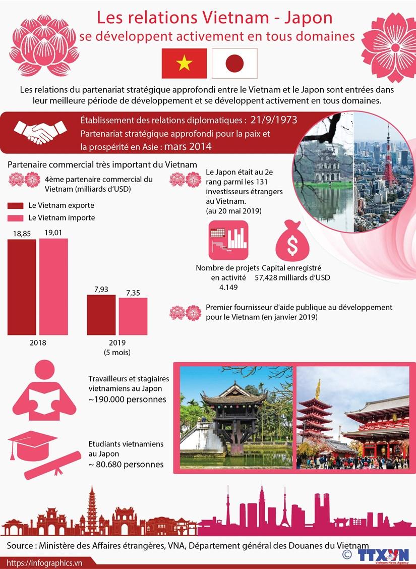 Les relations Vietnam - Japon se developpent activement en tous domaines hinh anh 1