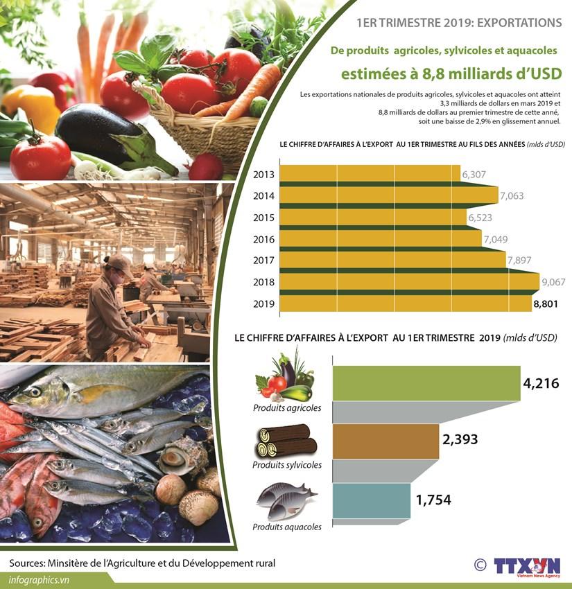 Exportations de produits agricoles, sylvicoles et aquatiques en baisse de 2,9% au premier trimestre hinh anh 1