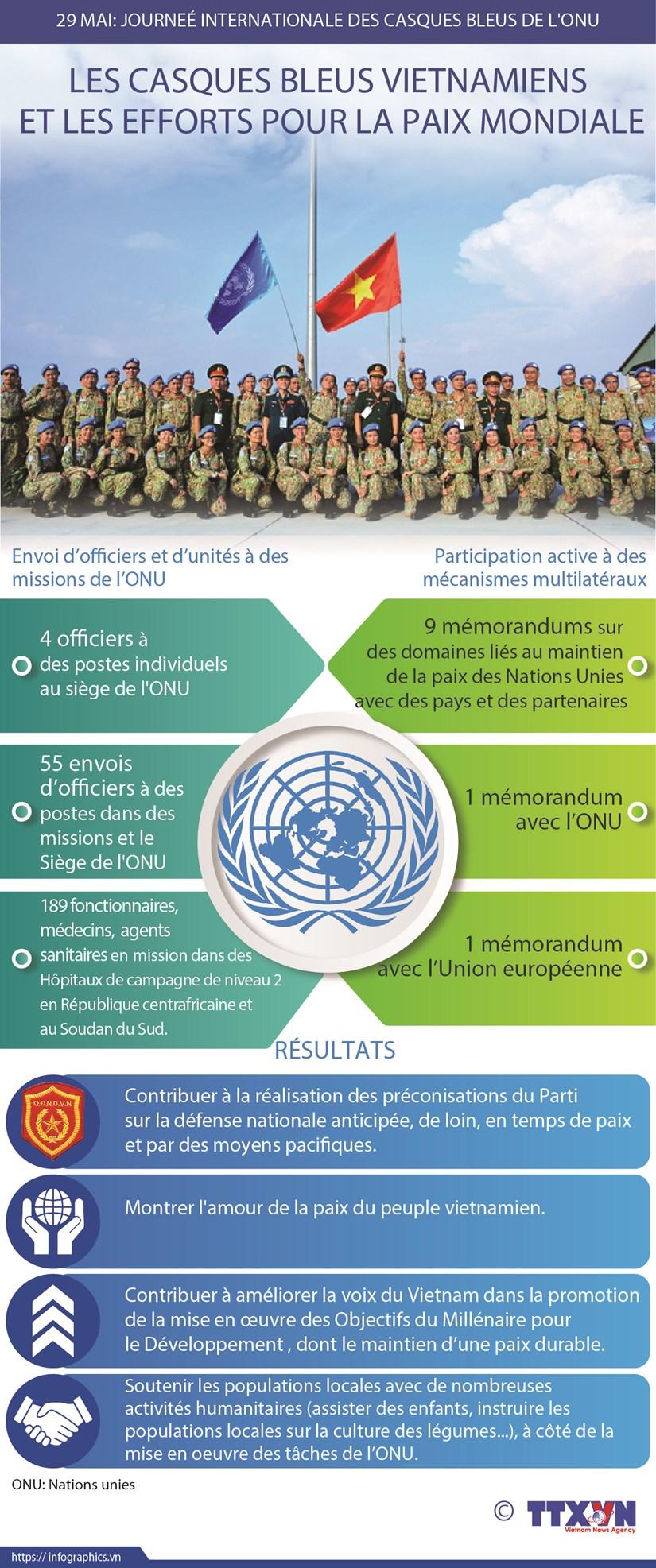 Les casques bleus vietnamiens et les efforts pour la paix mondiale hinh anh 1