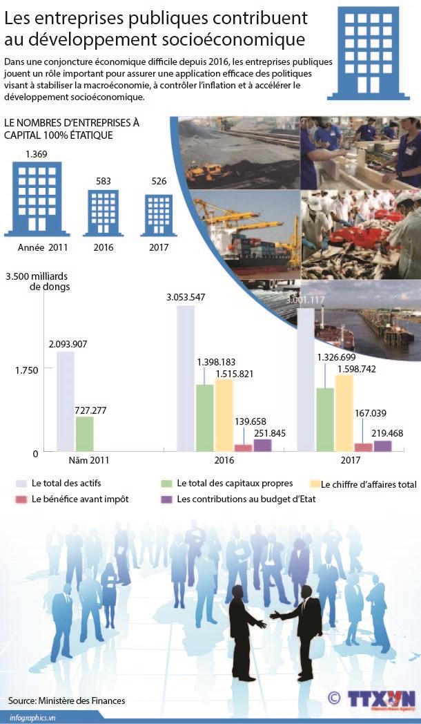 Les entreprises publiques contribuent au developpement socioeconomique hinh anh 1