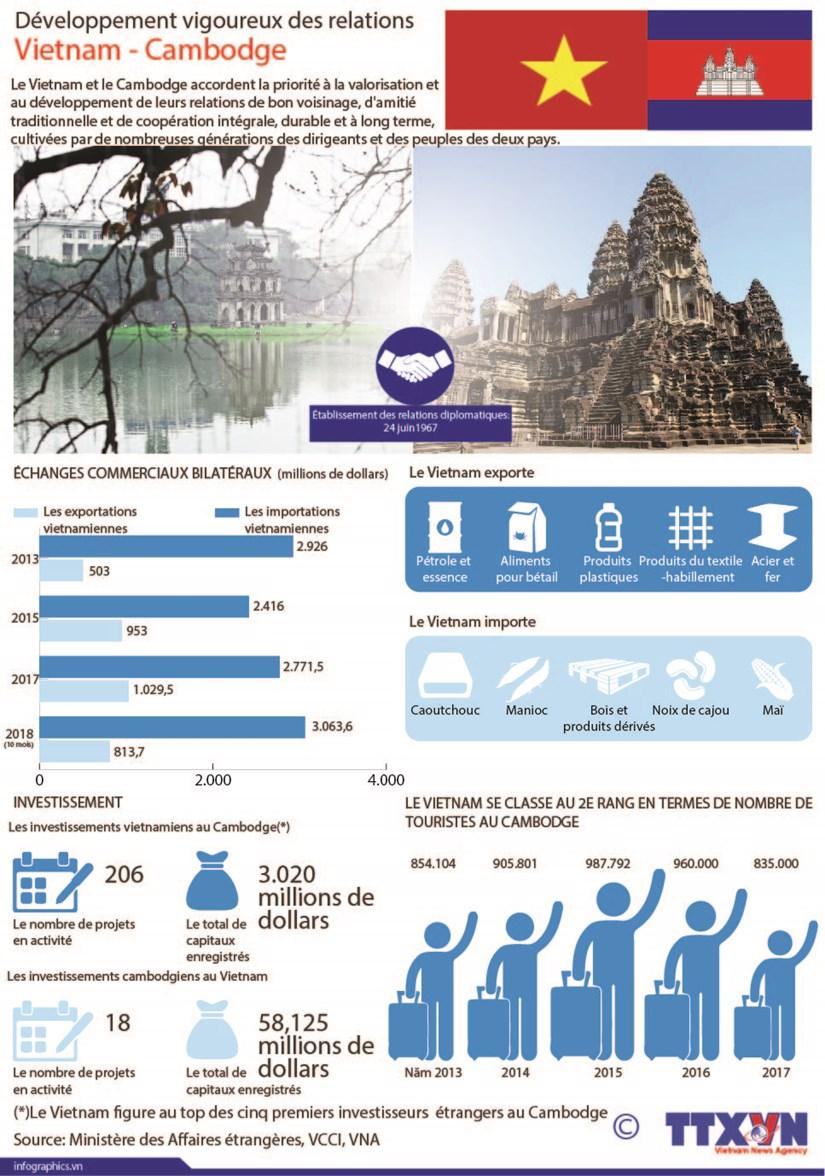 Developpement vigoureux des relations Vietnam - Cambodge hinh anh 1